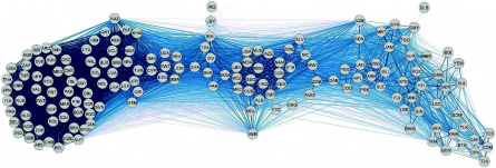 Network of global economic competition on export-markets